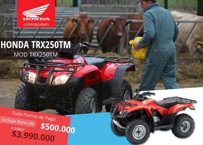 trx250tm-moto-honda-colvin-y-colvin-3-2018